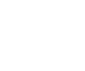 simulationHub by CCTech logo