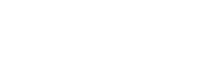 iviva logo